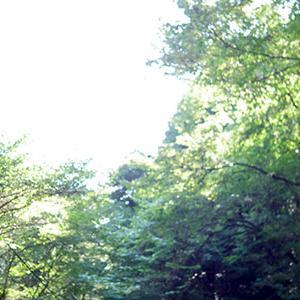 今年も遊美塾秋季宿泊講習に参加してきます