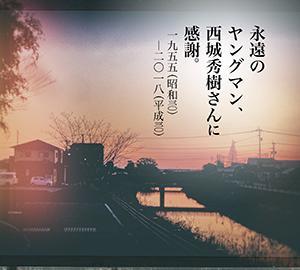 前田画楽堂本舗デザイン商品 18.11.6〜永遠のヤングマン