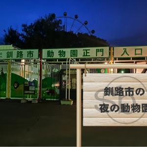 【大人気イベント】夏季限定の釧路市動物園で開催される夜の動物園で夜の動物園デート