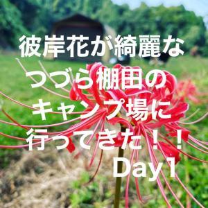 彼岸花が奇麗なつづら棚田のキャンプ場行ってきた!