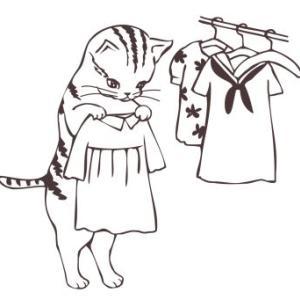 洋服はたくさんあるが、着る服がない問題