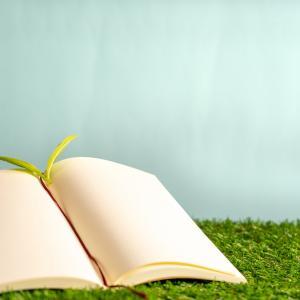 受験で成功するための環境づくり!受験期に築くべき人間関係と勉強に適した場所とは