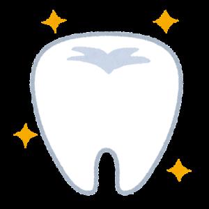 改めていつまでも健康な歯でい続けたいと思う
