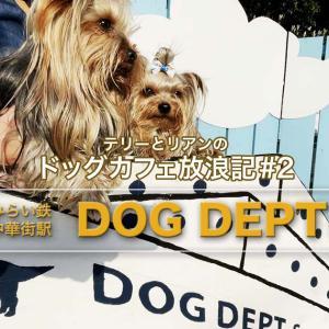 テリーとリアンのドッグカフェ放浪記!#2 – 横浜市中区『ドッグデプト 港の見える丘公園』さま
