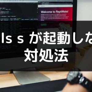 【Ruby on Railsトラブル】rails server (rails s) できない原因と対処方法【初心者向け】