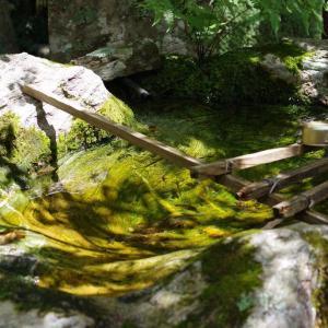 お寺の手水鉢