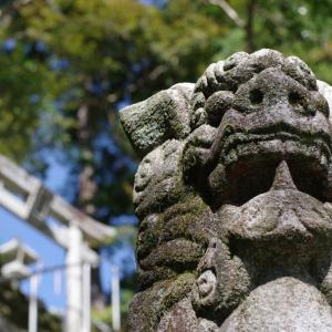 新谷神社(大豊町高須)の狛犬