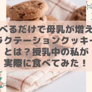 食べるだけで母乳が増えるラクテーションクッキーとは?授乳中の私が実際に食べてみた!