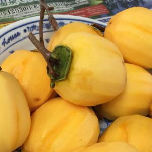 雨が多い地域での干し柿の作り方