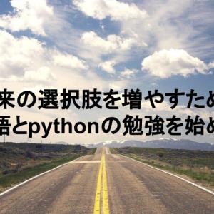 将来の選択肢を増やすため、英語とpythonの勉強を始める
