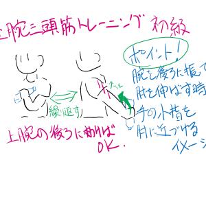 女性の天敵!上腕三頭筋トレーニング(*'ω'*)!