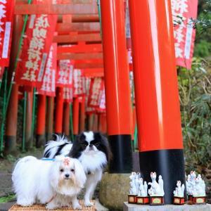 ここは京都ではありませんが・・・(笑)