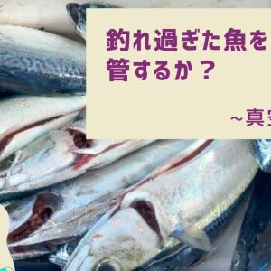 【アイテム】魚が多過ぎる案件について