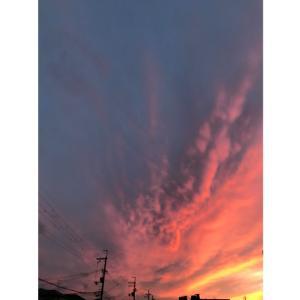 タローと見た夕焼け空