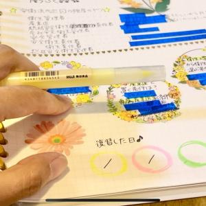 【社労士試験】かわいく楽しく勉強して社労士試験に合格するテスト【理想と現実】