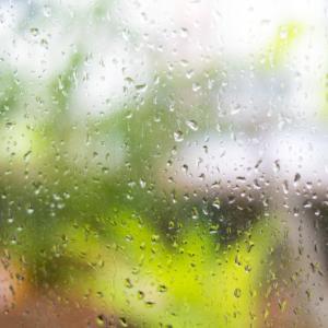 本「哀しみの雨」★★★★☆タイトル詐欺です、悲劇ではなくハッピーエンドなので安心して下さい