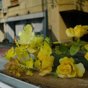 ドラマチックになり損ねた黄色い花