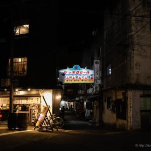 まだ見ぬ越後路の果てへ④〜夜の新潟楽天地