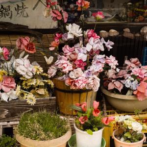 オールドレンズと店先の花