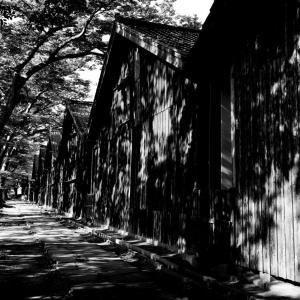 山居倉庫で影の世界を撮る