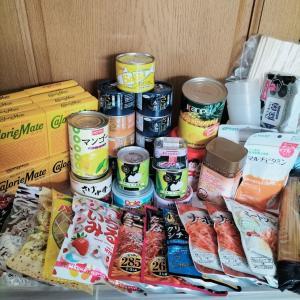 【災害】過食症の備蓄品公開【必需品】
