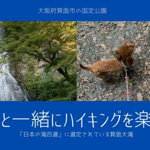 【日本の滝百選】愛犬とプチハイキング 大阪府箕面市の国定公園