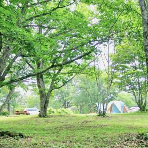 神奈川県のキャンプ場ピックアップ