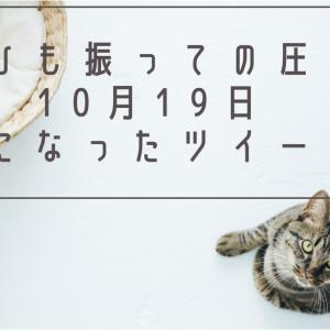 ひも振っての圧/10月19日気になったツイート