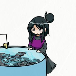 チョウザメを飼育するともこさん