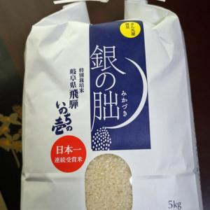 銀の朏という米