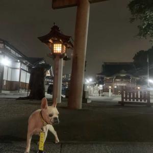 神社にお散歩