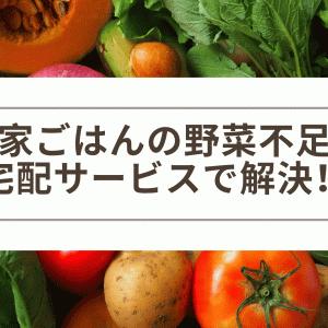 野菜宅配サービスで野菜不足と献立マンネリを一気に解決!