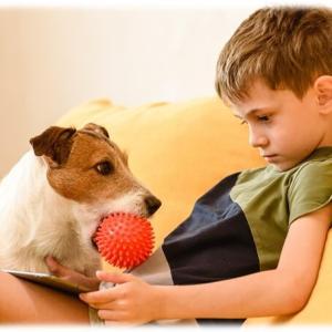 愛犬が「かまってちゃん」なら要チェック!共働きは犬を溺愛しない方がよい理由