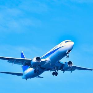 大手航空会社に投資したい!!!!