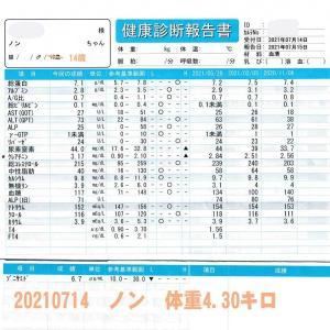 ノン血液検査20210714