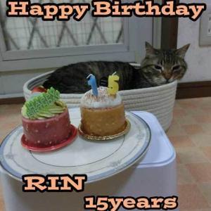 リンHappy Birthday15歳