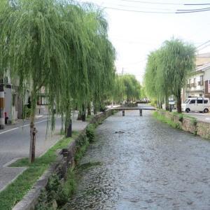 京都白川沿いの有名なロケ地 一本橋
