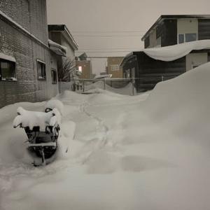 まだまだ続く雪降り^^;