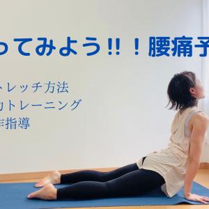 やってみよう‼腰痛予防
