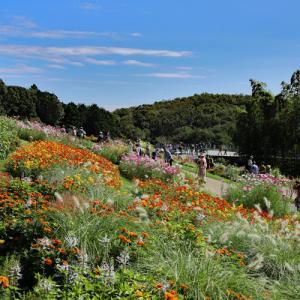 Garden Necklace YOKOHAMA 里山ガーデン