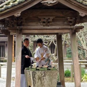 紅梅咲く 鎌倉妙本寺