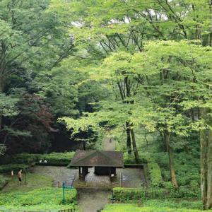 川崎 東高根森林公園