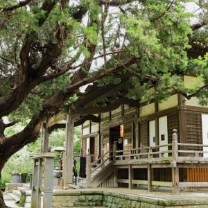 萩の花咲く 鎌倉宝戒寺