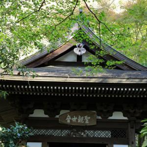 鎌倉円覚寺 黄梅院