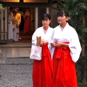 鎌倉鶴岡八幡宮 ぼんぼり祭り 2