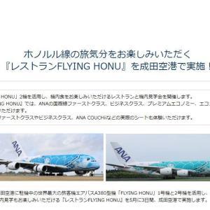2021年05月29日:ANA2029便1(レストランFLYING HONU:ホヌと間近で対面!)