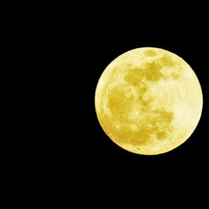 やぎ座の満月でみたもの