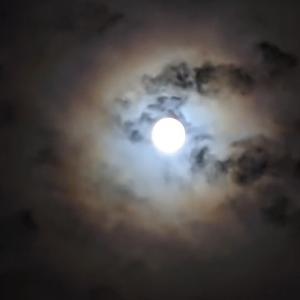 月に願いを・・・
