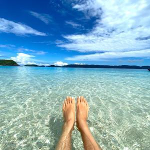 座間味島に再び!! 慶良間ブルー&海カメと泳ぐ♡
