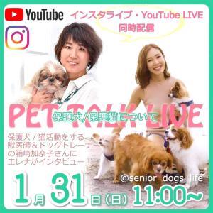 1月31日保護犬/保護猫LIVEのお知らせ&3月20日わんわんクリーン隊/私たちにできるエコ入門